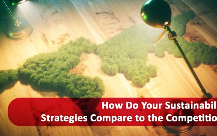 how to achieve sustainable competitive advantage